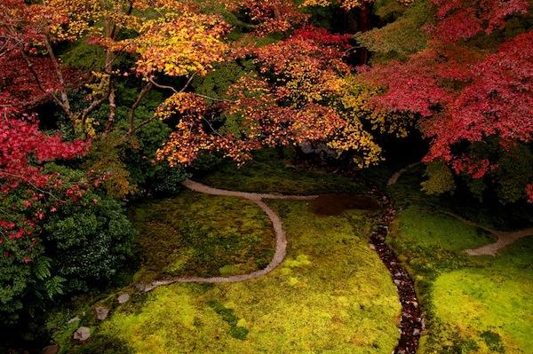 Memories of japan a paean to perfection - Moosgarten kyoto ...