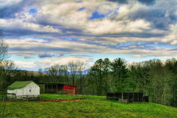"A family farm in the author's beloved ""Great Blue Ridge."""