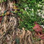 "A Thai ""Spirit House,"" or ""San Phra Phum,"" meaning ""Abode of the Land's Guardian Spirit."""