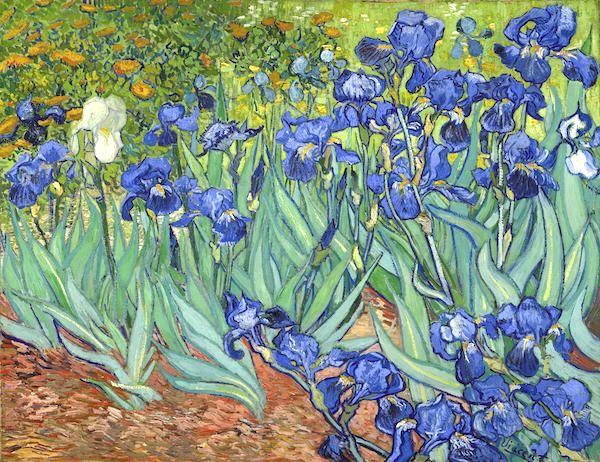 """Irises,"" Vincent Van Gogh, 1889, J. Paul Getty Museum."