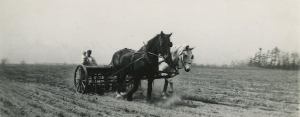 Seeding a yeomen's Arcadia.