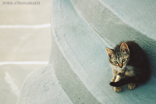 Athanassakis-FSG-07