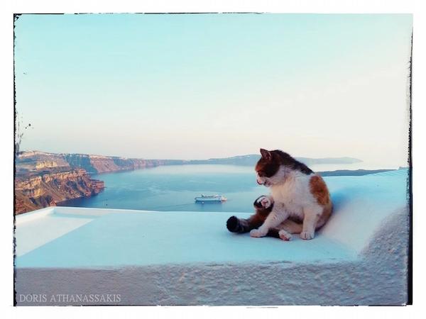 Fifty Shades of Greece XXX