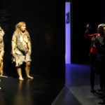 Flores, Homo sapiens, and Neanderthal women, and admission-paying visitors, Musee des Confluences.