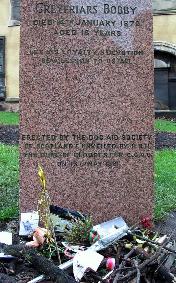 Greyfriars Bobby's headstone with floral and other offerings.