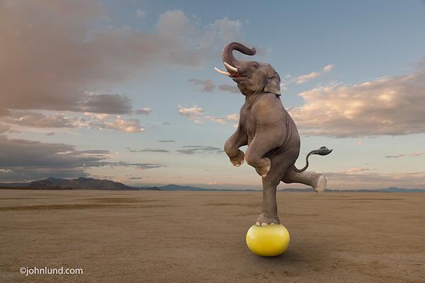 Balance is all. (Photo: John Lund
