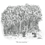 Kershaw trees