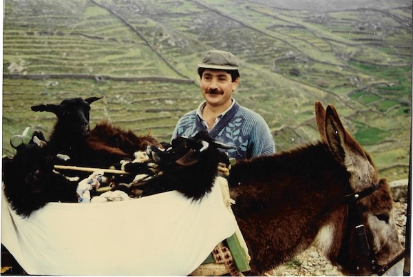 Local resident transporting lambs on his donkey, Kythnos, 1994.